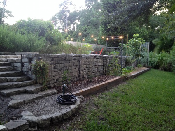 Backyard Ideas For Gabion Walls Diane And Dean